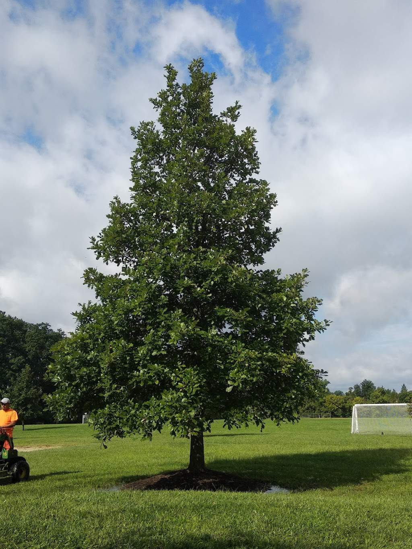 Weller Park - park    Photo 9 of 10   Address: 10021 Weller Rd, Montgomery, OH 45249, USA   Phone: (513) 891-2424