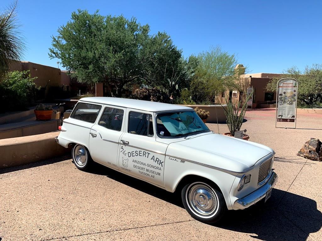 Arizona-Sonora Desert Museum - zoo  | Photo 8 of 10 | Address: 2021 N Kinney Rd, Tucson, AZ 85743, USA | Phone: (520) 883-1380