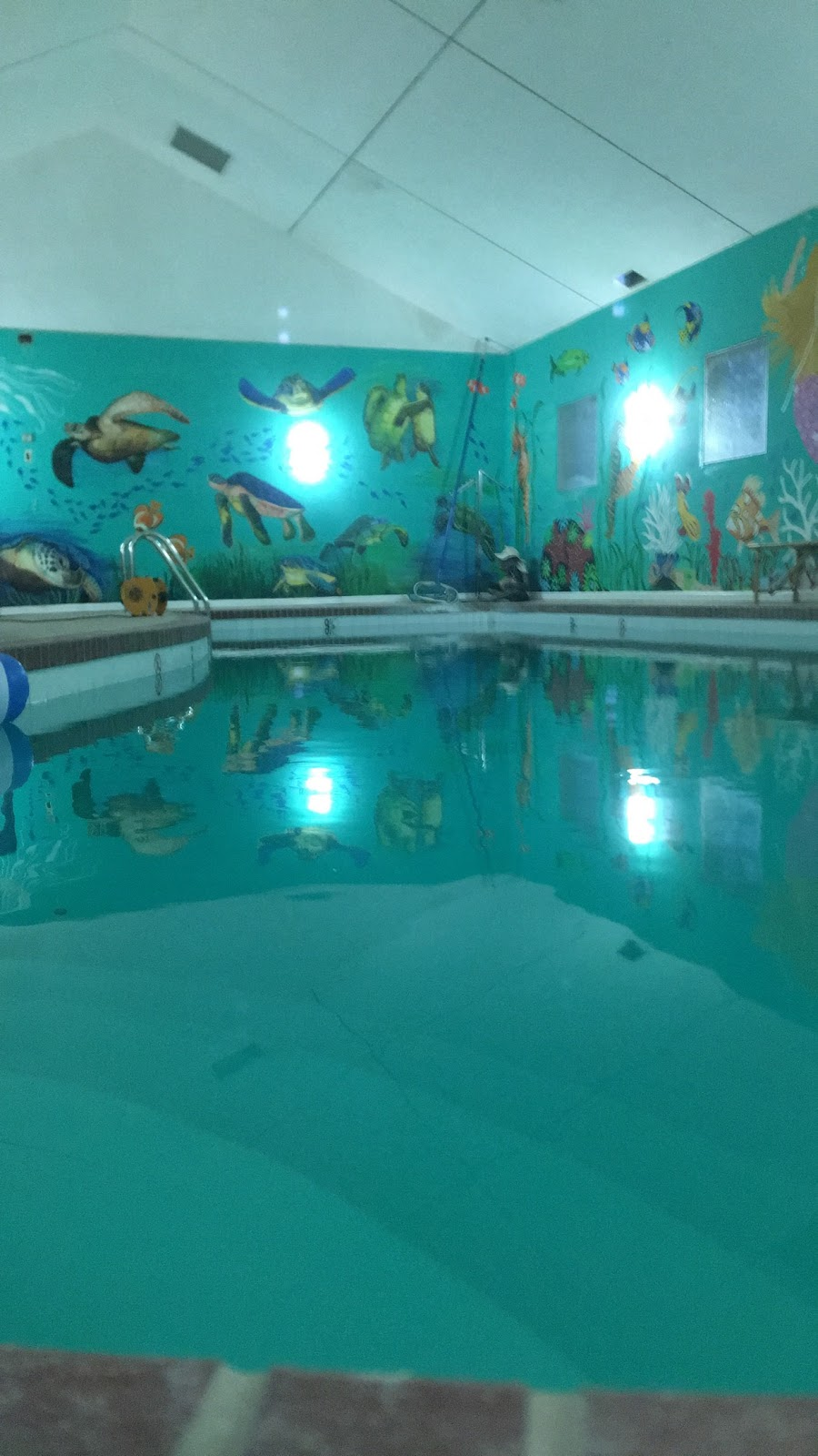Berry Scuba & Swim School - travel agency  | Photo 2 of 10 | Address: 200 Northfield Rd, Northfield, IL 60093, USA | Phone: (847) 827-3100