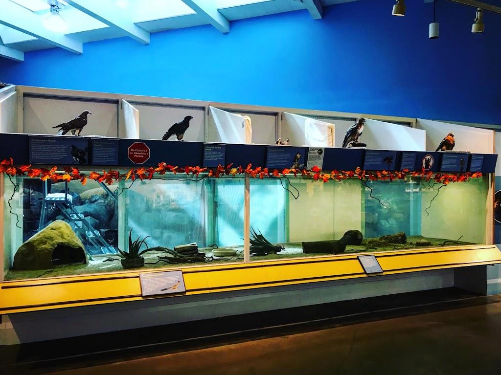 Lindsay Wildlife Experience - museum    Photo 6 of 10   Address: 1931 1st Ave, Walnut Creek, CA 94597, USA   Phone: (925) 935-1978