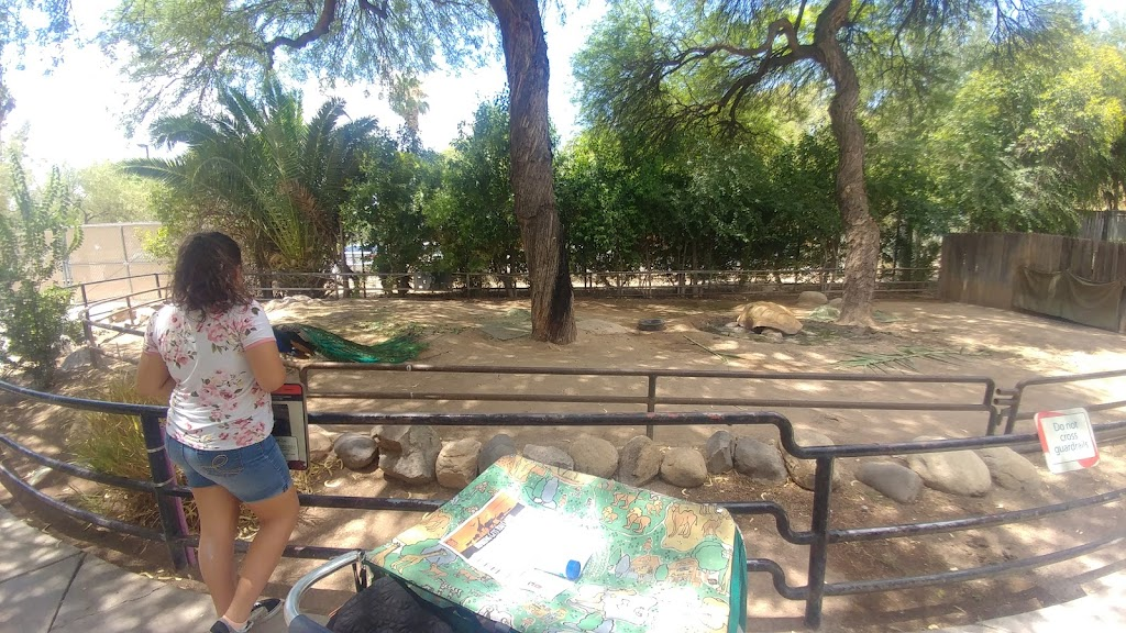 Reid Park Zoological Society - zoo    Photo 6 of 10   Address: 1030 S Randolph Way, Tucson, AZ 85716, USA   Phone: (520) 791-3204