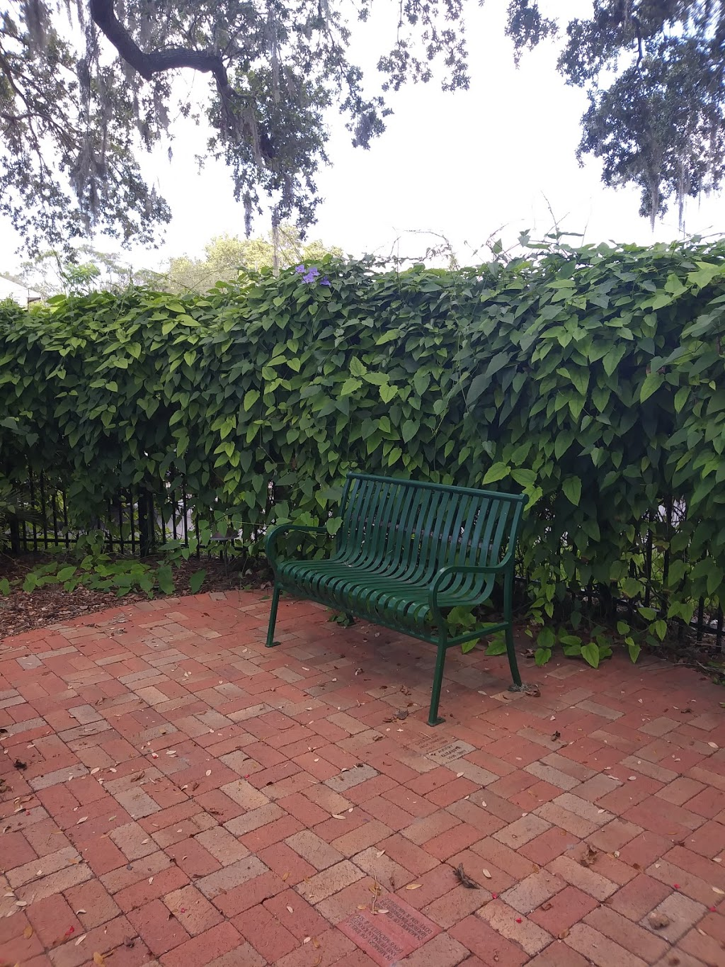 Gulfport Public Library - library    Photo 9 of 10   Address: 5501 28th Ave S, Gulfport, FL 33707, USA   Phone: (727) 893-1074