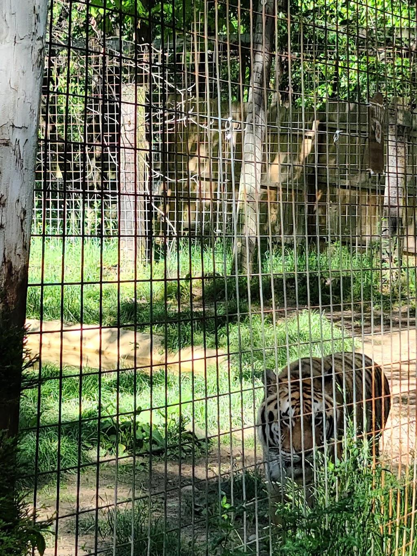 Black Pine Animal Sanctuary - park    Photo 2 of 10   Address: 1426 W 300 N, Albion, IN 46701, USA   Phone: (260) 636-7383