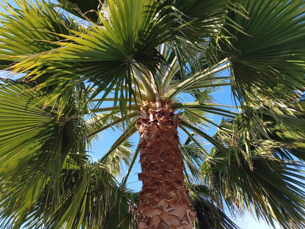 Sunburst Park Mobile Homes Est - rv park  | Photo 5 of 10 | Address: 21001 Plummer St SPC 14, Chatsworth, CA 91311, USA | Phone: (818) 618-2391