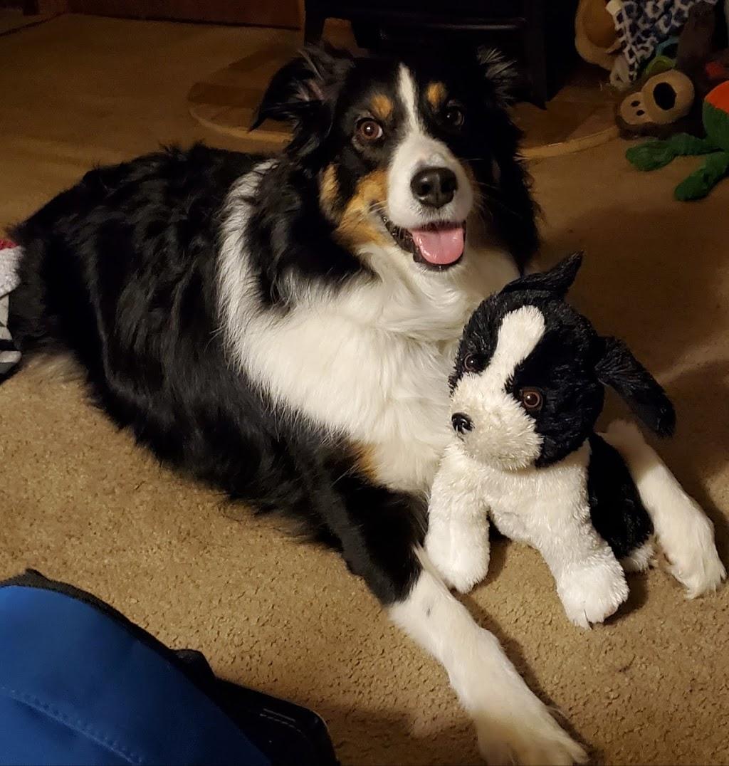 Pet Doctors of America - veterinary care    Photo 4 of 10   Address: 14471 Beach Blvd, Jacksonville, FL 32250, USA   Phone: (904) 223-5700