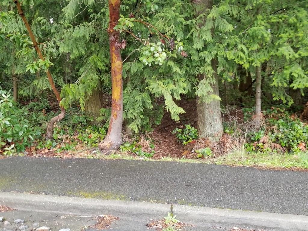 South Woods Park - park    Photo 10 of 10   Address: 2210 NE 150th St, Shoreline, WA 98155, USA   Phone: (206) 363-5517