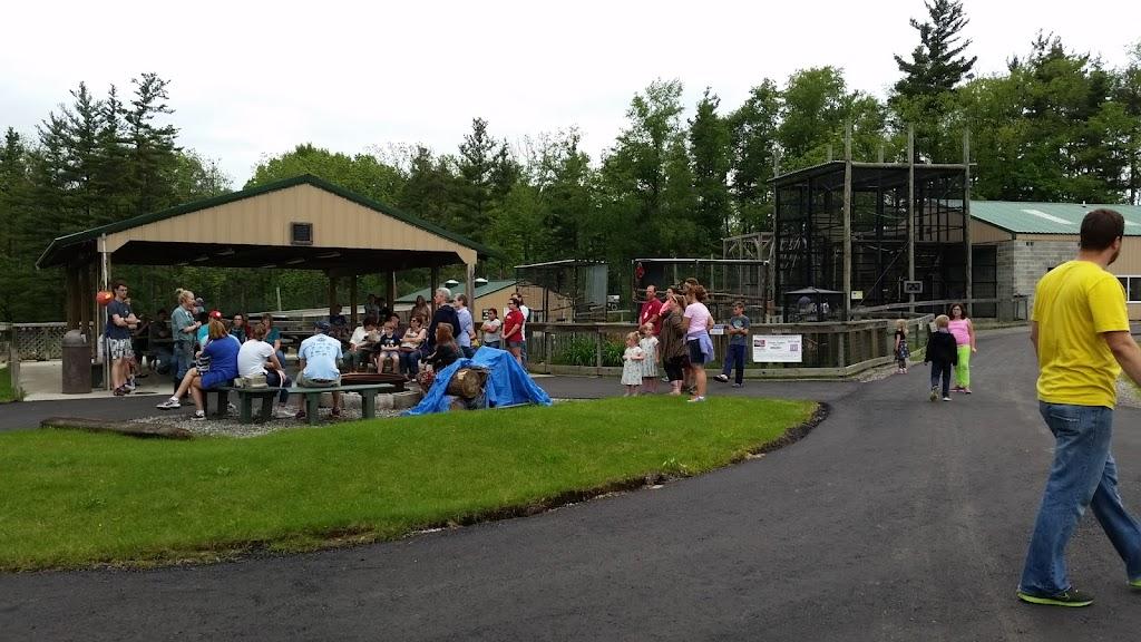 Black Pine Animal Sanctuary - park    Photo 5 of 10   Address: 1426 W 300 N, Albion, IN 46701, USA   Phone: (260) 636-7383