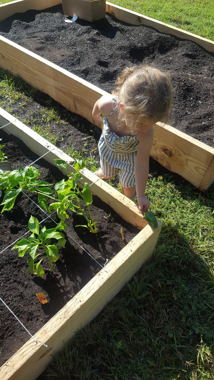 Wildflower Preschool & Kindergarten - school  | Photo 7 of 10 | Address: 3100 Damascus Church Rd, Chapel Hill, NC 27516, USA | Phone: (919) 260-6859