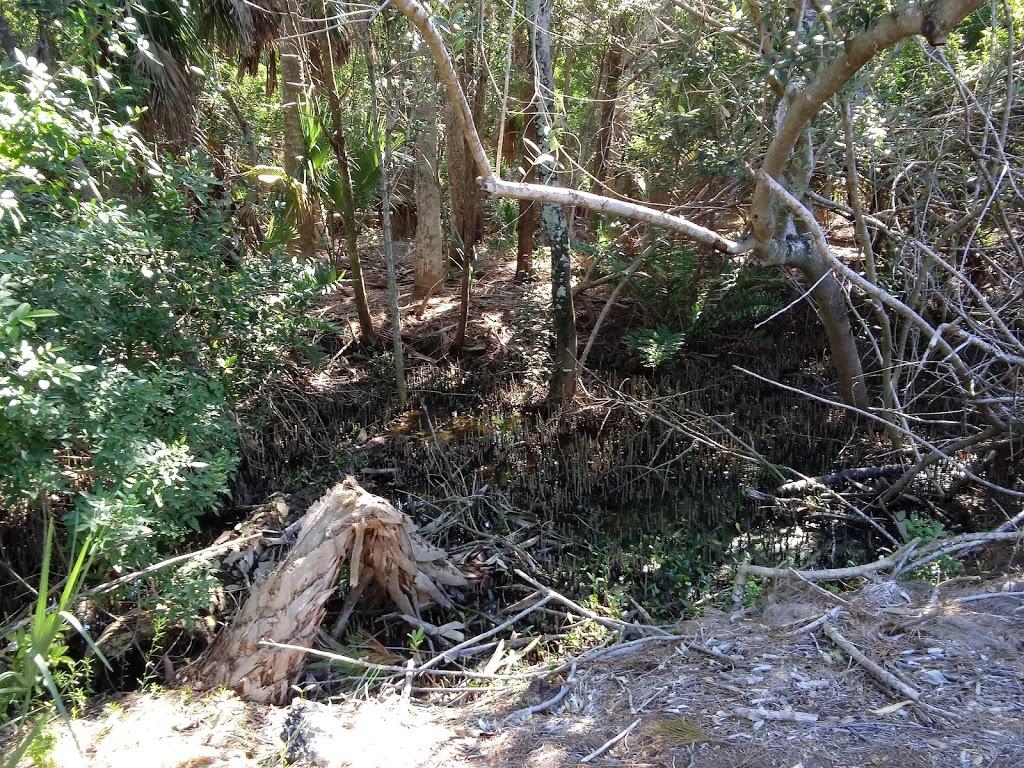 Pasco Palms Preserve - park    Photo 6 of 10   Address: 4466 Trouble Creek Rd, New Port Richey, FL 34652, USA   Phone: (727) 847-8140