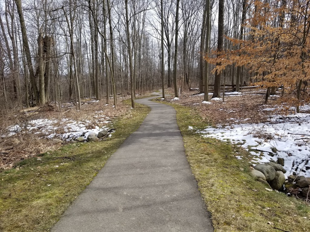 Liberty Park - park  | Photo 8 of 10 | Address: 9999 Liberty Rd, Twinsburg, OH 44087, USA | Phone: (330) 487-0493