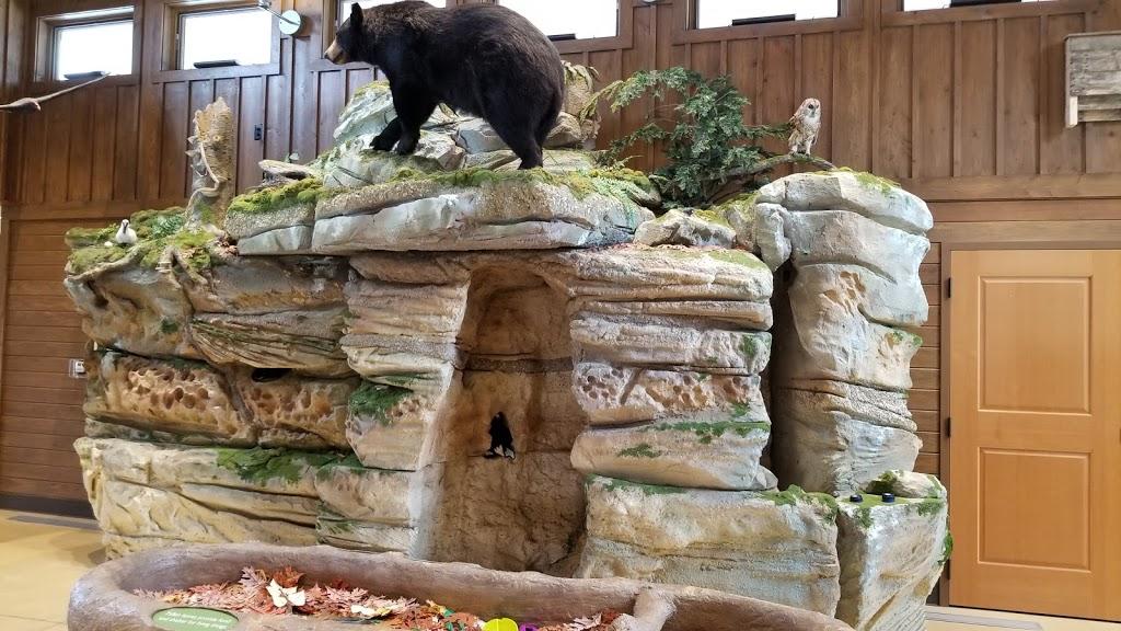 Liberty Park Nature Center - museum  | Photo 5 of 10 | Address: 9999 Liberty Rd, Twinsburg, OH 44087, USA | Phone: (330) 487-0493