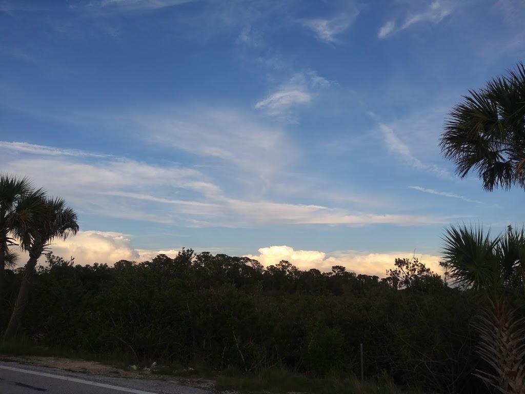 Pasco Palms Preserve - park    Photo 5 of 10   Address: 4466 Trouble Creek Rd, New Port Richey, FL 34652, USA   Phone: (727) 847-8140