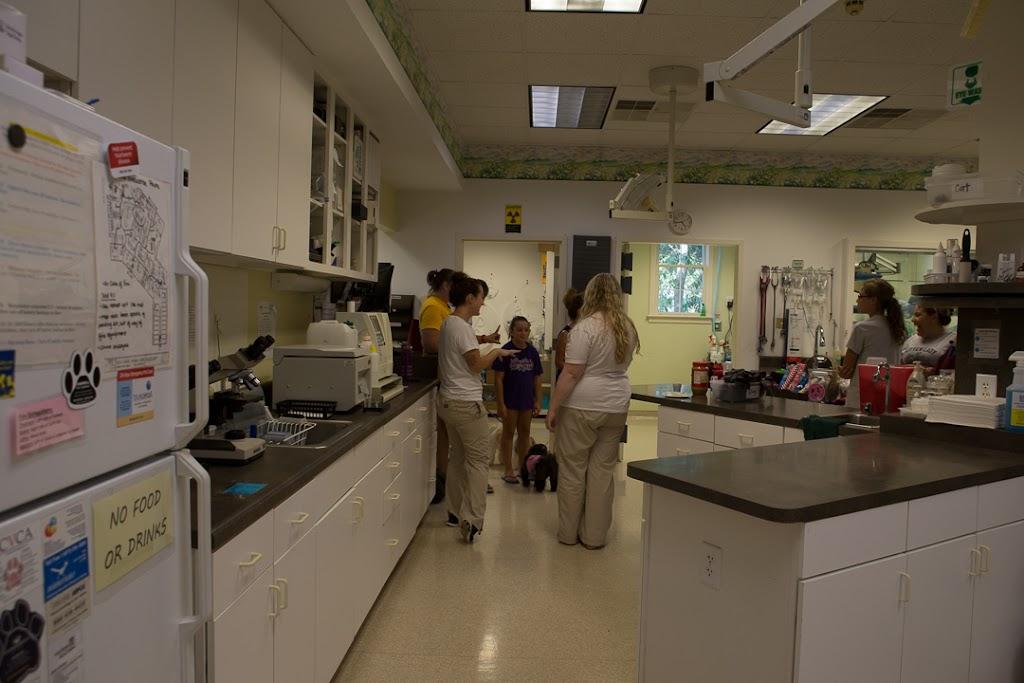 Kiln Creek Animal Care - veterinary care  | Photo 3 of 10 | Address: 900 Brick Kiln Blvd, Newport News, VA 23602, USA | Phone: (757) 886-1300