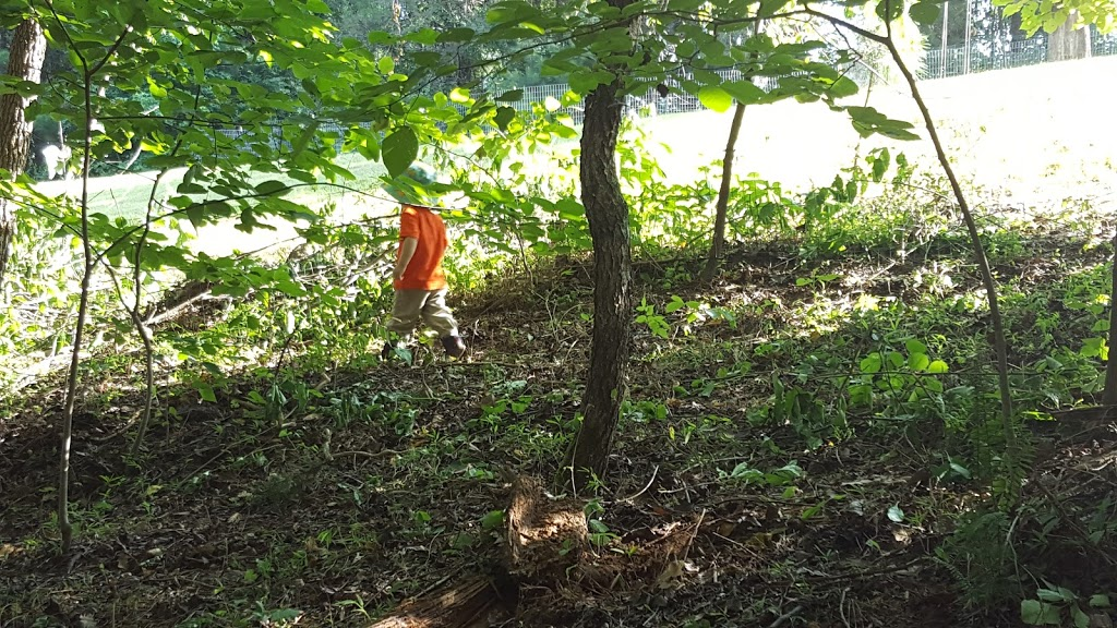 Wildflower Preschool & Kindergarten - school  | Photo 2 of 10 | Address: 3100 Damascus Church Rd, Chapel Hill, NC 27516, USA | Phone: (919) 260-6859