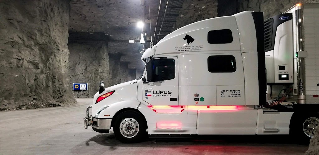 Lupus Superior LLC - moving company  | Photo 1 of 10 | Address: 213 Jere St, Grand Prairie, TX 75050, USA | Phone: (682) 774-9294