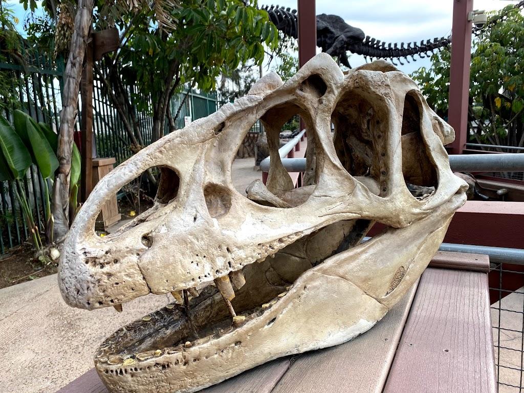 Discovery Cube Orange County - museum  | Photo 10 of 10 | Address: 2500 N Main St, Santa Ana, CA 92705, USA | Phone: (714) 542-2823