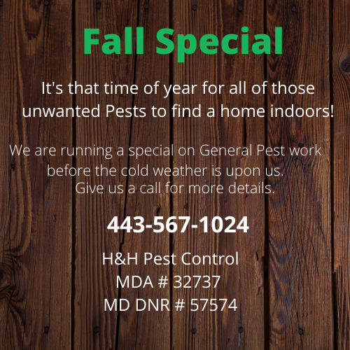 H&H Pest Control - home goods store    Photo 1 of 5   Address: 4680 Norrisville Rd, White Hall, MD 21161, USA   Phone: (443) 567-1024