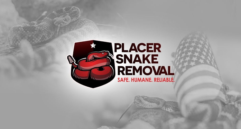 Placer Snake Removal - home goods store  | Photo 1 of 10 | Address: 3995 Clover Valley Rd, Rocklin, CA 95677, USA | Phone: (916) 509-1087