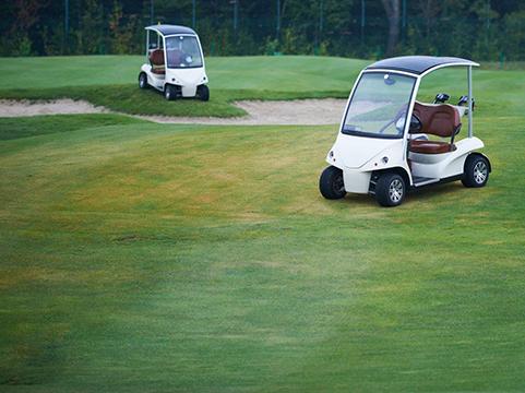 Golf Cart World - store  | Photo 3 of 3 | Address: 5239 S, NC-62 # A, Burlington, NC 27215, USA | Phone: (336) 260-5247
