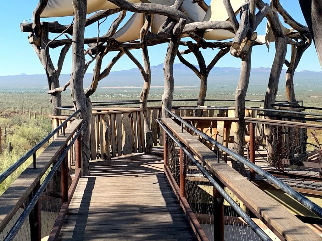 Arizona-Sonora Desert Museum - zoo  | Photo 9 of 10 | Address: 2021 N Kinney Rd, Tucson, AZ 85743, USA | Phone: (520) 883-1380