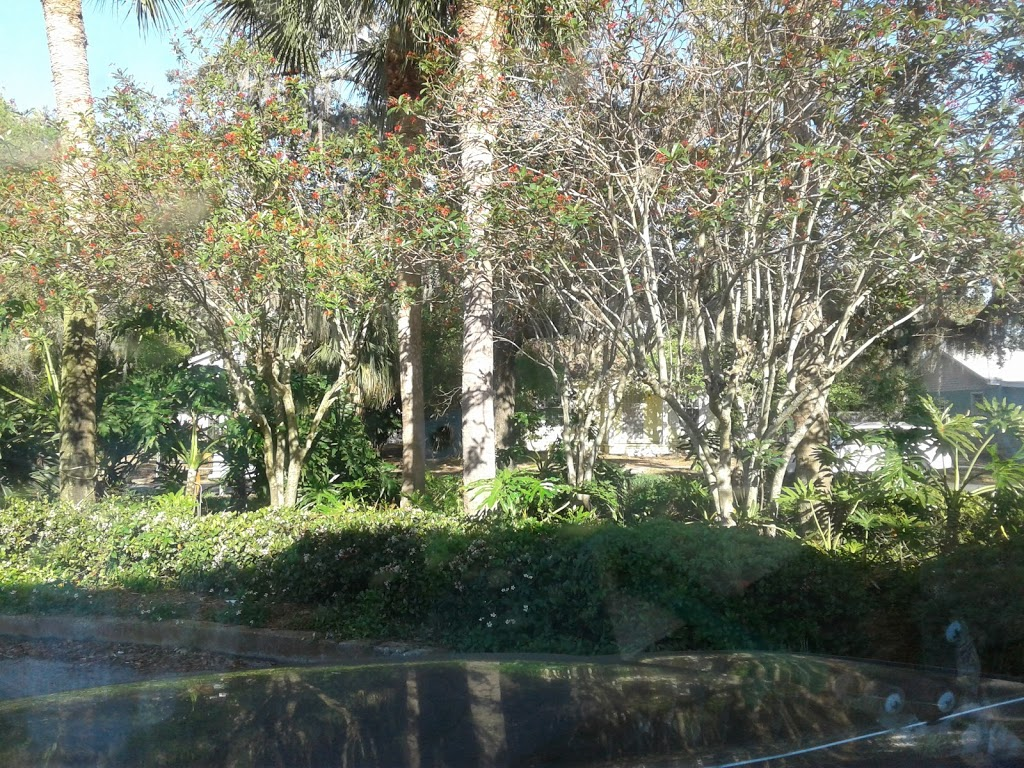 Gulfport Public Library - library    Photo 4 of 10   Address: 5501 28th Ave S, Gulfport, FL 33707, USA   Phone: (727) 893-1074