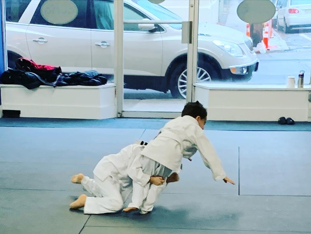 Grappling University Martial Arts - Brazilian Jiu Jitsu & Judo - health    Photo 5 of 10   Address: 575 Van Houten Ave, Clifton, NJ 07013, USA   Phone: (862) 368-0084