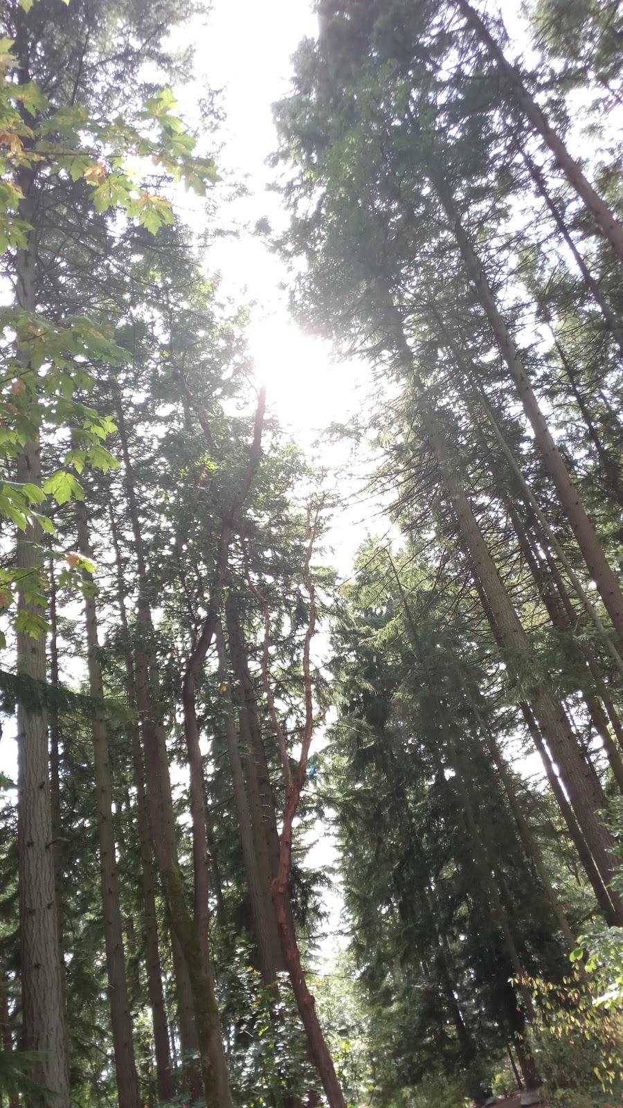 South Woods Park - park    Photo 6 of 10   Address: 2210 NE 150th St, Shoreline, WA 98155, USA   Phone: (206) 363-5517