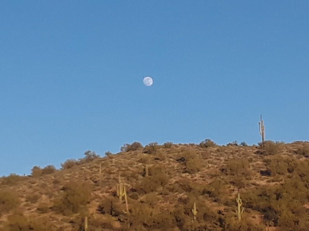 Desert Trails Bike Park - park  | Photo 9 of 10 | Address: 2955 N Recker Rd, Mesa, AZ 85215, USA | Phone: (480) 644-7529
