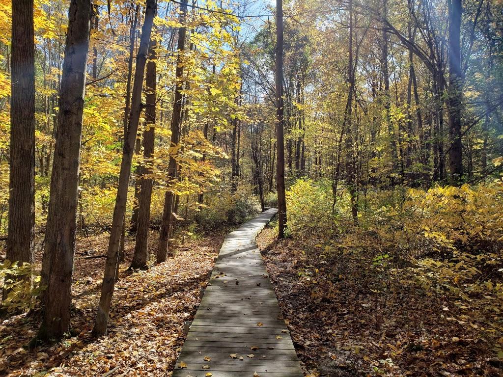 Liberty Park - park  | Photo 6 of 10 | Address: 9999 Liberty Rd, Twinsburg, OH 44087, USA | Phone: (330) 487-0493
