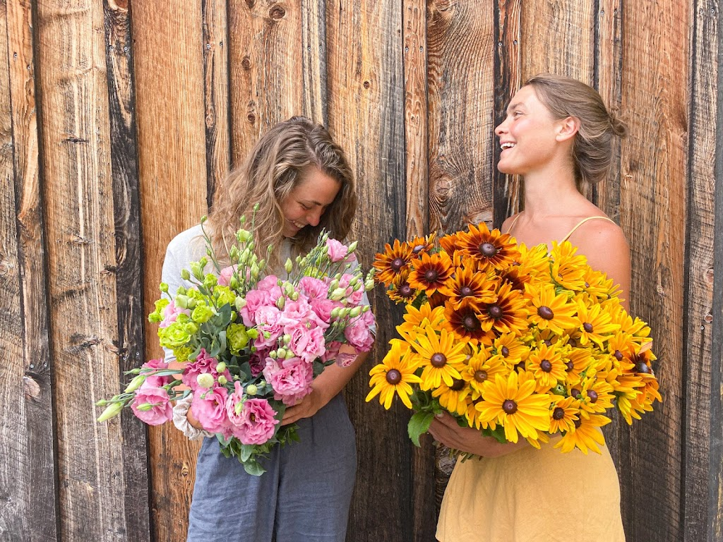Pisarcik Flower Farm - florist    Photo 4 of 10   Address: 365 Browns Hill Rd, Valencia, PA 16059, USA   Phone: (724) 898-1434